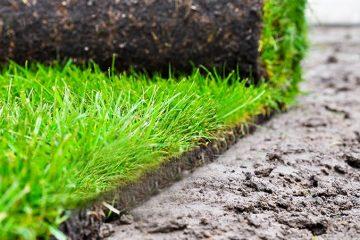 Lawn, Turf & Garden Care