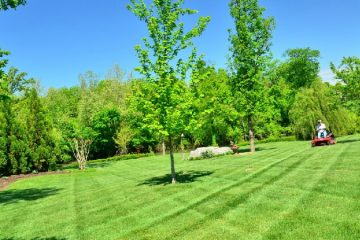 Property Groundskeeping Services
